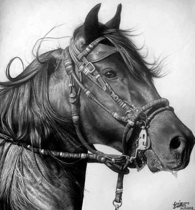teckna-häst